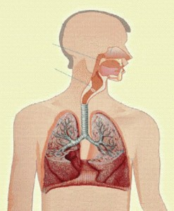 causas-disnea