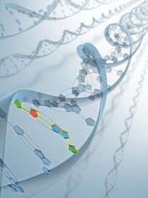 Imagen de DNA