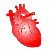 Figura de un corazón