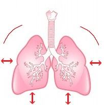 Respiración pulmonar, hiperventilación