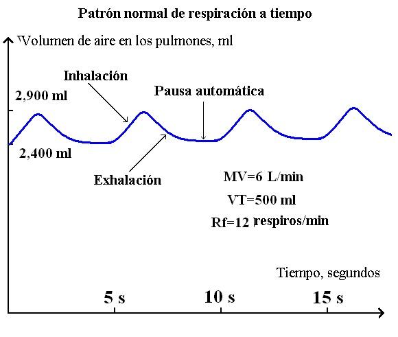 Patrón de respiración normal