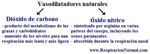 Gráfico de vasodilatadores naturales
