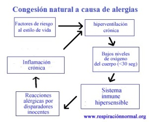 Cuadro de congestión natural a causa de alergias