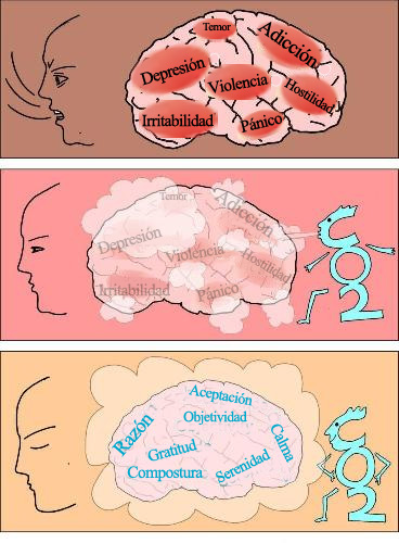 Efectos del CO2 sobre el trauma psicológico o emocional